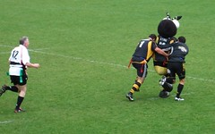 Craig Dowd and Riki Flutey help Sting to score a try.