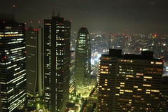 2008-07 Tokyo 171 (blogmulo) Tags: city travel building japan architecture tokyo arquitectura view nightshot ar viajes nocturna government nippon 2008 japon metropolitan japn aplusphoto blogmulo