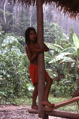 Chikoona Indian girl (Blue-yonder) Tags: brazil brasil amazon columbia amazonas chikoona