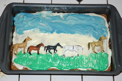 Matlock Farm (roddh) Tags: summer camp horse art cake work nikon farm d70s riding carrot matlock roddh dsc2874