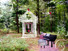 Music-in-the-forest