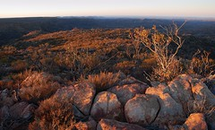 mawson plateau - plateau sunset (liam.jon_d) Tags: terrain mountain rock stone plateau south australian rocky australia ranges remote stony sa wilderness society southaustralia campaign flinders rugged harsh mawson flindersranges tws freeling semiarid arkaroola wildernesssociety remotearea southaustralian thewildernesssociety mawsonplateau freelingheights arkarol arakroolawildernesssanctuary mountfreeling mawarkslideshow