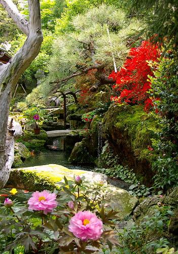 Jardín japonés en kioto