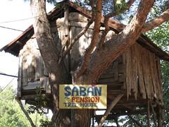 Treehouse camp ın Olympos