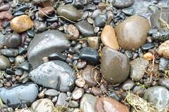 Lakeshore stones
