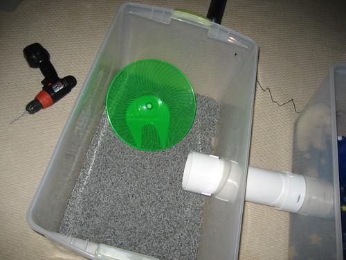 Cage Setup Ex&les - Page 2 - Hedgehog Central u2013 Hedgehog pet care u0026 owner forum & Cage Setup Examples - Page 2 - Hedgehog Central u2013 Hedgehog pet ... Aboutintivar.Com