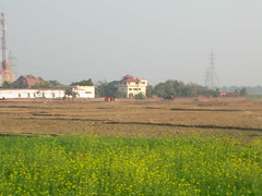view from the land