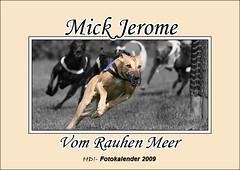 Whippet Mick Jerome Kalender 2009