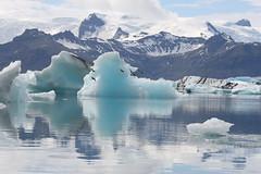 jkulsrln (Westquoy) Tags: ice iceland soe jkulsrln glaciallagoon golddragon 40d abigfave abigfav vatnajkullglacier westquoy