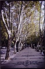 promenade (Pascal Rue14N14) Tags: holidays lisboa pascal holga135