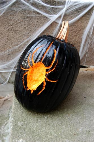 SpiderPumpkin