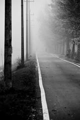 Ombre nella nebbia (johnny XXIII & francy VI) Tags: bw fog shadows piovedisacco fiumicello