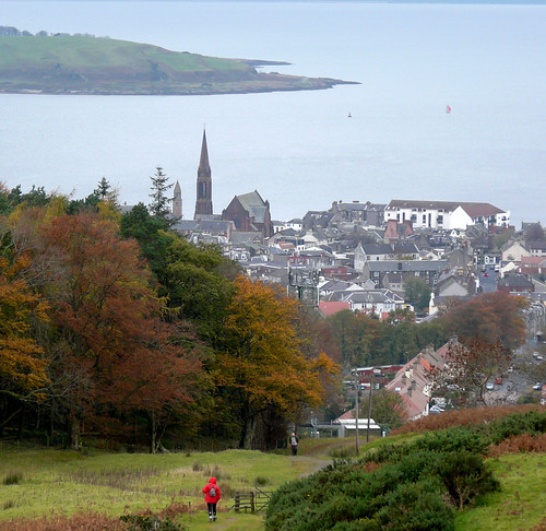 View above Largs Gogo path 06Nov08