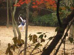 IMG_0634 (blue.tengu) Tags: korea seoul folkvillage suwon