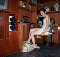 Intentando estudiar/ traying to study (MeluRogi) Tags: flickr labrador roger studying computadora estudiando melu