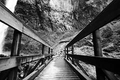 2008.11.19 - Elowah Falls