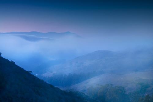 Fog on the Headlands