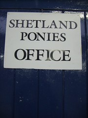 Office for ponies