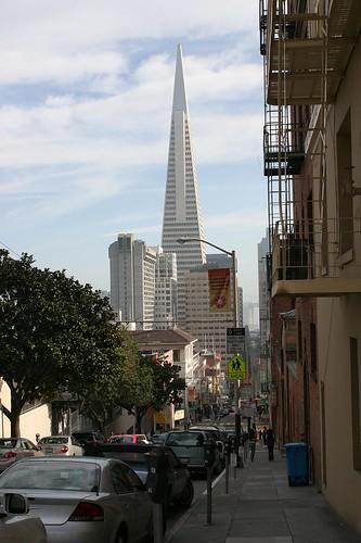 San Francisco Scenes