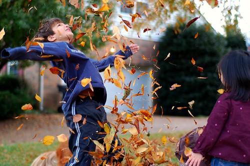 Leaf Fun 11-08 (233)