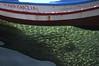 mariagrazia in vendita (zecaruso) Tags: sea italy fish barca mare pesci sicily caruso palermo sicilia ciccio mondello nikond300 zecaruso cicciocaruso