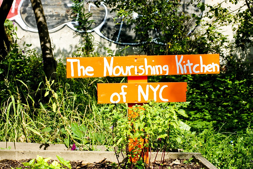 The Nourishing Kitchen garden plot