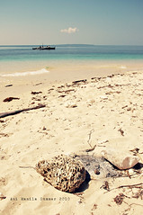 grounds (aui_manila) Tags: sea shells beach clouds boat sand nikon paradise skies waters sands corals pilipinas pangasinan d40 driftwoods turquoiseseas tambobong auimanila dasolpangasinan collibraisland