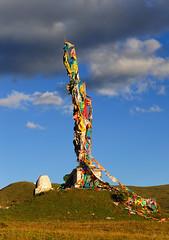 Prayer flags on staff དར་ལྕོག dar lcog, Tibet (reurinkjan) Tags: prayerflag lungta tibetanlandscape དར་ལྕོག བོད་ལྗོངས། རླུང་རྟ་ ©janreurink tibetanplateauབོད་མཐོ་སྒང་bötogang khamཁམས། buddhismསངས་རྒྱས་ཆོས་ལུགས། tibetབོད dardoདར་མདོ་county prayerflagsonstaffདར་ལྕོགdarlcog 2010༢༠༡༠ lhagangལྷ་སྒང་lhasgang