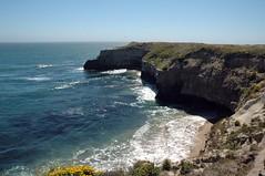 (John 3000) Tags: california ca blue santacruz nature water tag3 taggedout coast mar agua tag2 tag1 natureza playa cliffs arena pacificocean oceanography wilderranch statebeach