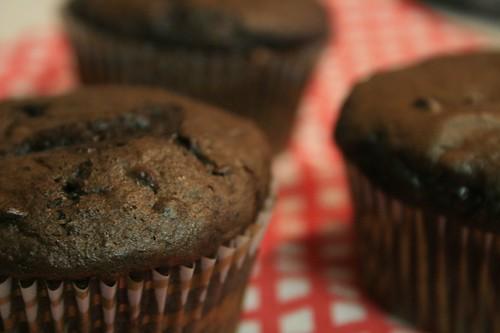 devil's food + pudding mix + mini morsels = ooooh.