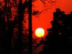 Solar Eclipse (sir_watkyn) Tags: trees sunset red sky orange sun india landscape solar eclipse interestingness dusk astronomy picnik abigfave platinumphoto aplusphoto ysplix Astrometrydotnet:status=failed flickrbestpics topqualityimageonly chakdighi lifetravel sirwatkyn Astrometrydotnet:id=alpha20090318326020