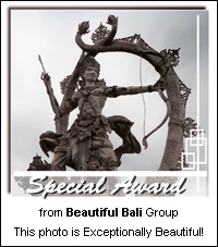Beautiful Bali Special Award