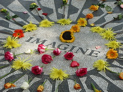 Strawberry Fields Forever (Thumbnail)