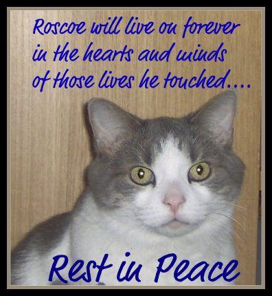 Roscoe-RestInPeace