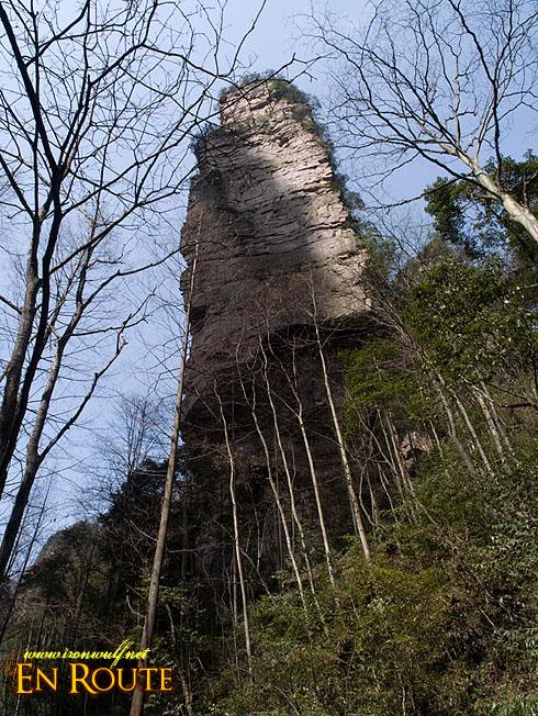 Wulingyuan Towering Sand Stone Pillar