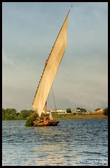 Sailing Down the Nile in a Feluka ! (Bashar Shglila) Tags: sky river cross sudan nile faluka dongola    worldbest isawyoufirst bentaher