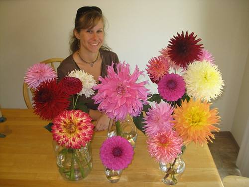 Kim, with the bountiful dahlias