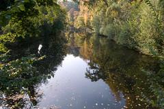 Moat around the City Castle Park (rfc1437) Tags: park nature landscape canal pond industrial harbour münster mnster