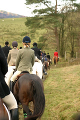 Bridleway (nick3216) Tags: bridleway horses hunting vlh valeofluneharriers cumbria uk caballo paard pferde cheval hevonen cavallo  hest ko cavalo cal  hst
