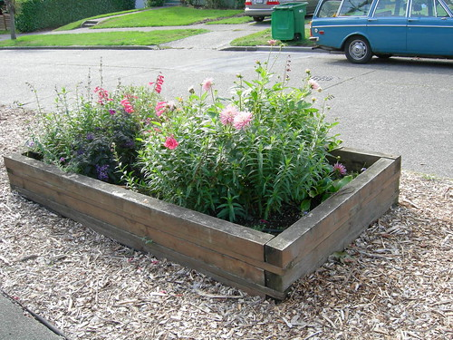 Low raised bed for flowers