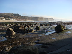 MartinsBeach_2007-061 (Martins Beach, California, United States) Photo