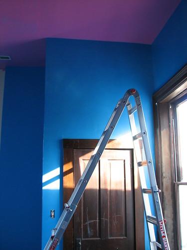DD10 chose the colors...