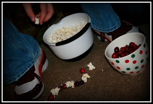 Popcorn & Cranberries 012