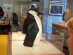 Giant Origami Penguin