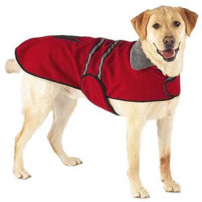 Scope's new dog jacket!