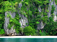 Isolated and Unspoilt (Storm Crypt) Tags: ocean travel blue trees sea cliff plants white green beach water forest island sand marine rocks asia southeastasia paradise waterfront branches philippines gray cliffs resort shore tropical coastline seashore uninhabited tropics beachfront isolated rockwall southchinasea archipelago marinelife secluded puertoprincesa palawan destinations seawater travelphotography tropicalcountries wowphilippines limestonecliffs philippinearchipelago westernpalawan southchincasea