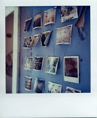 Slow decay of polaroid (~KIM~) Tags: polaroid sx70 timezero polaroidhouse
