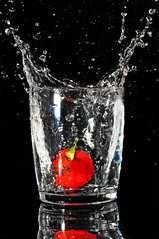 Habanero splash (Tambako the Jaguar) Tags: chile red black hot macro reflection rot water glass face fruit studio spectacular rouge pepper drops nikon chili piment flash explore round refraction spill soe habanero d300 scharf savina supershot frozenmotion abigfave anawesomeshot impressedbeauty ultimateshot frhwofavs goldstaraward flickrestrellas faceinwater rubyphotographer 100commentgroup micarttttworldphotographyawards micartttt herowinner