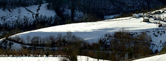 El llern de Angeln (Caliaetu) Tags: espaa rural spain asturias biospherereserve mab asturies naturalpark caso parquenatural caleao sooc reservadelabiosfera casu caliao caliaetu fernandotorrealonso pelcaminasturias