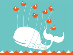 3292450512 eb134824a1 m Beaten to the Tweet: Twitter Cybersquatters Have Hijacked Brands